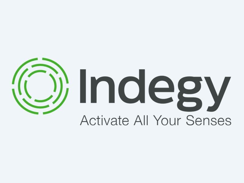 Indegy logo